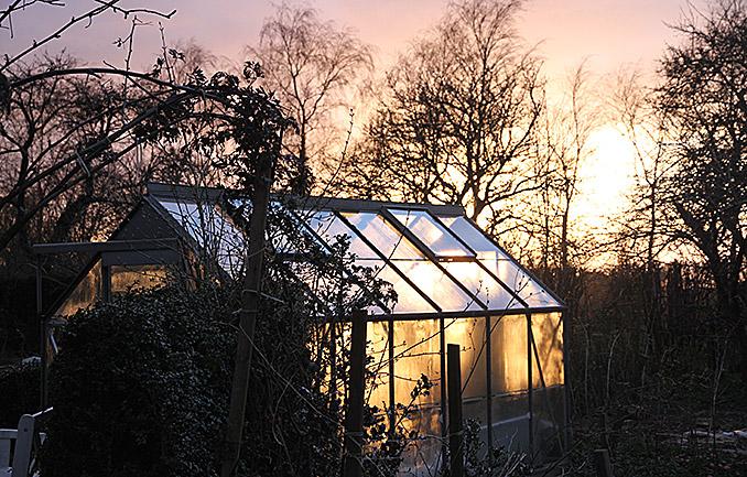 drivhus og solnedgang.