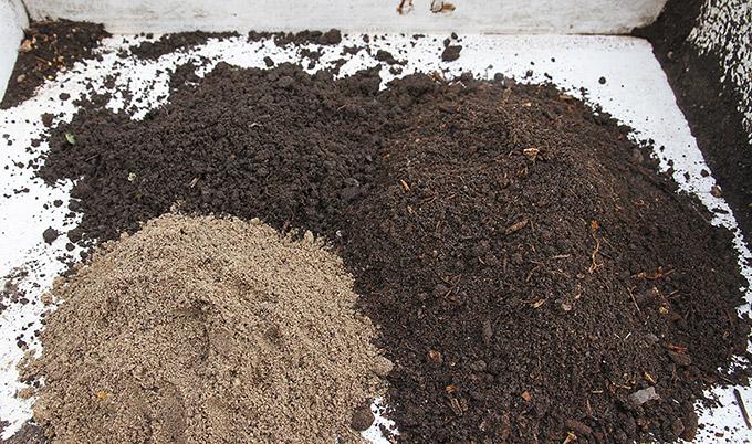 Til højre plantebaseret omsat kompost, til venstre sand, bagerst havejord.