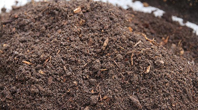 En god omsat plantebaseret kompost.