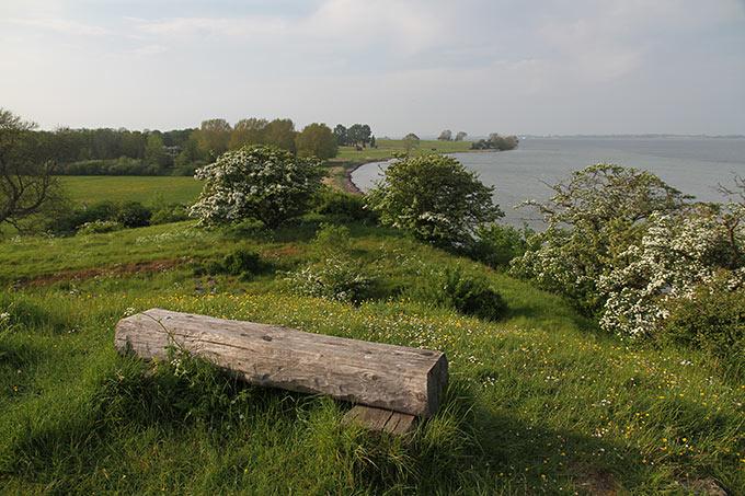 En bænk på Ravnsby bakke med udsigt - mod Kragenæs.