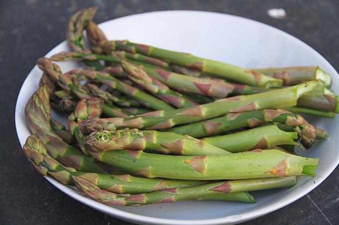 friskplukkede asparges