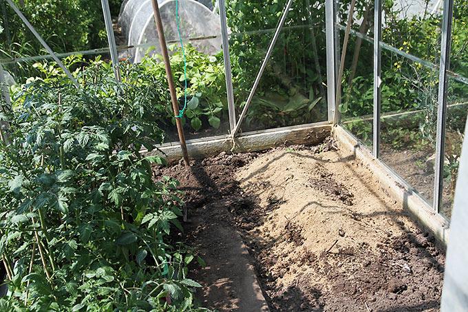 Sandblandet jord til agurker