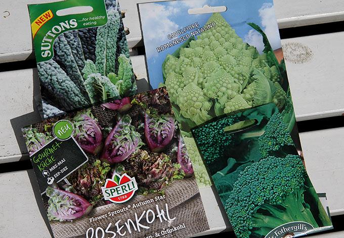 frøposer_blomsterkå_romanesco_broccoli2627