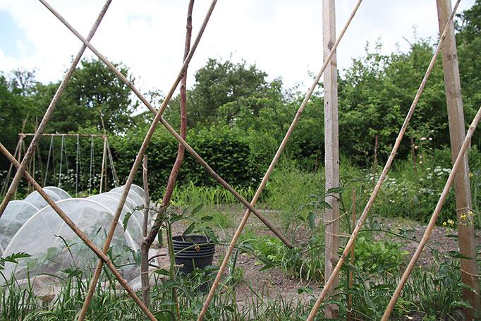 Ærtehegnet af bambus flettes sammen