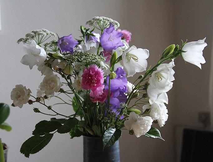 Fødseldagsbuket med små buketroser, nelliker, klokkeblomster og skvalderkål.