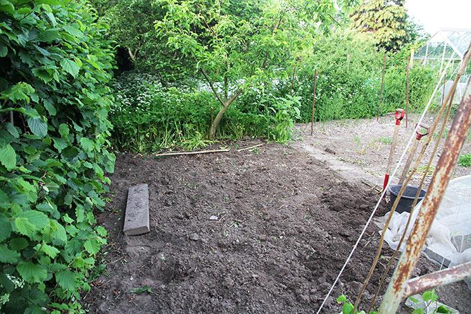 Bedet planlægges til at starte til højre for cementflisen.