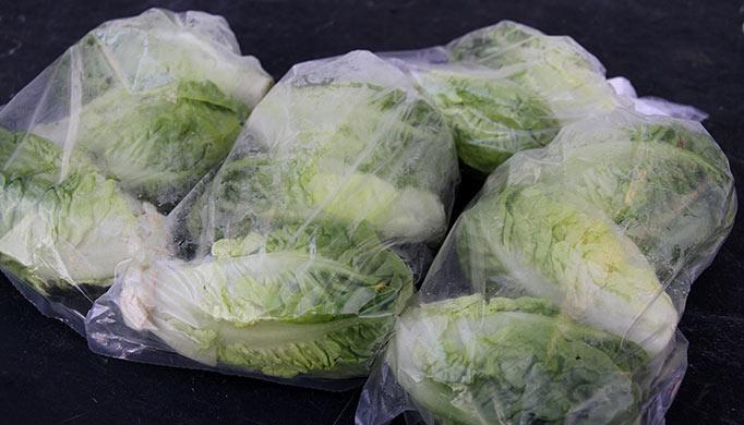 Salathoveder på vej i køleskabet.