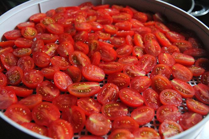 Tomatbakke med små tomater.