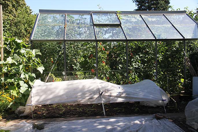 Der er sat to lag fiberdug over bedet for at give skygge til planterne, mens de etableret sig.