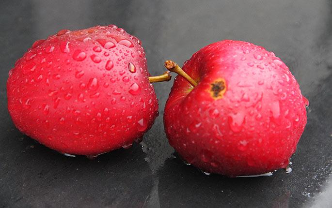 Regn og Summerred æbler