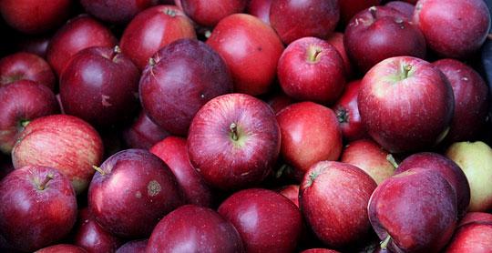 Spartan æbler har lidt sejt skind, men er dejligt søde. De er fine skåret ud til drys på morgenmaden.