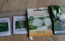 Tre sorter af knoldfennikel og en bredbladet persille.
