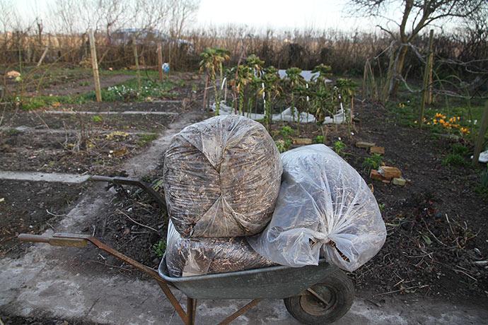Ålegræsset er samlet sammen i sække. Det skal bruges som jorddække igen omkring 1. juni.