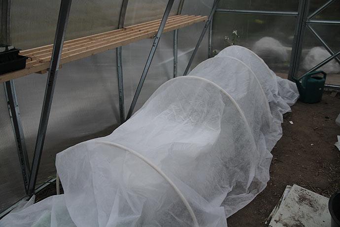 Godnat drivtunnel. Jeg har dækket vinterfiberdug over termokasser og såkasserne med porrer og kål.
