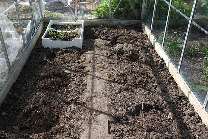 Kompostjord i alle huller - nu er der klar til at plante.