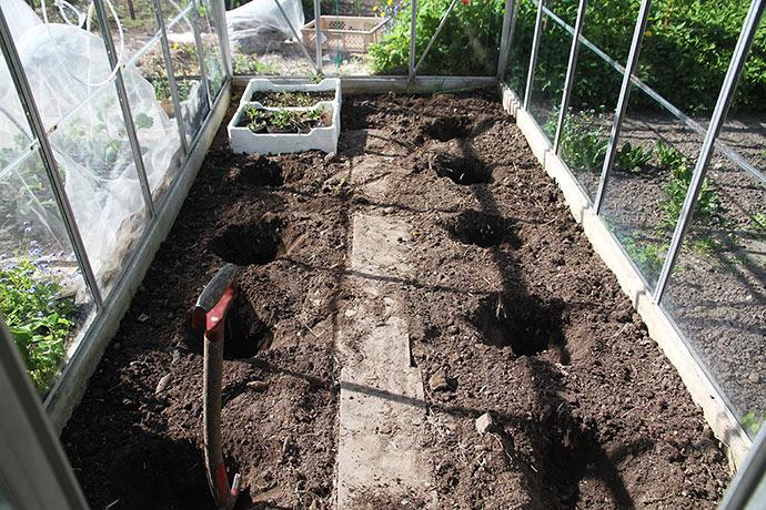 Der er fjernet en spandfuld jord fra hver af de 9 plantehuller.