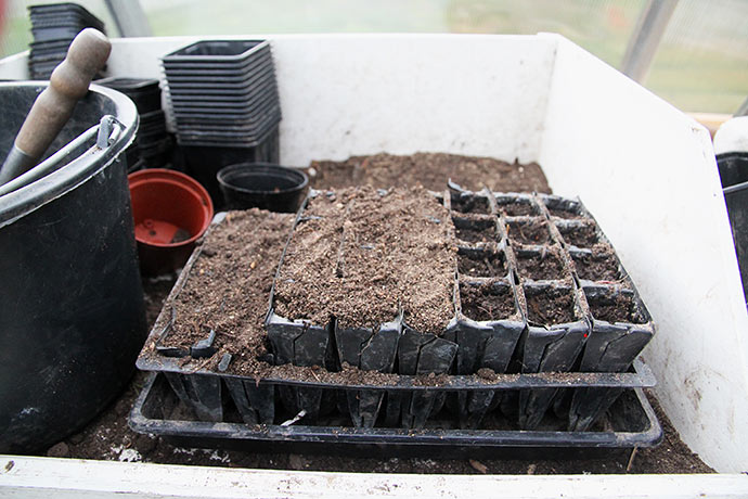 Der findes to højder på indsatsen til rootraineren. Jeg bruger normalt den høje til kål, majs og bønner.