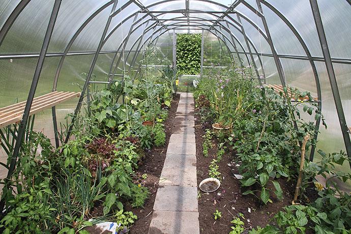 Jeg har fået lagt flisegang i drivtunnelen, så der kunne plantes basilikum langs gangen.