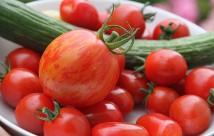 Den smukke rød- og gulstribede tomat.