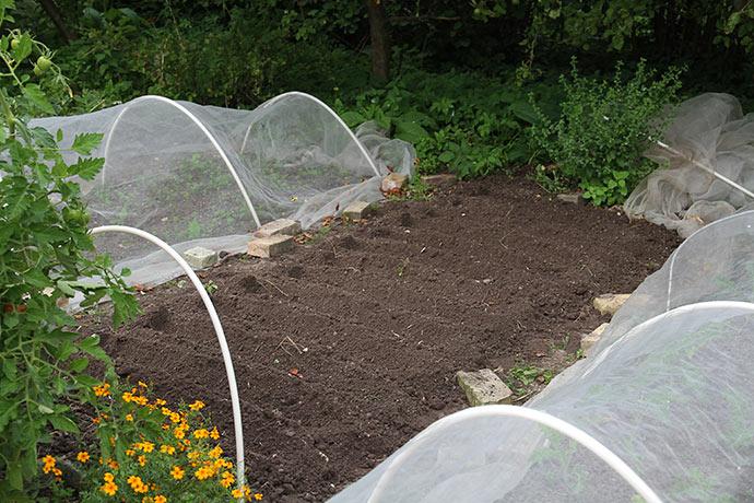 Jeg lavede brede og dybe riller til at fylde op med kompost.
