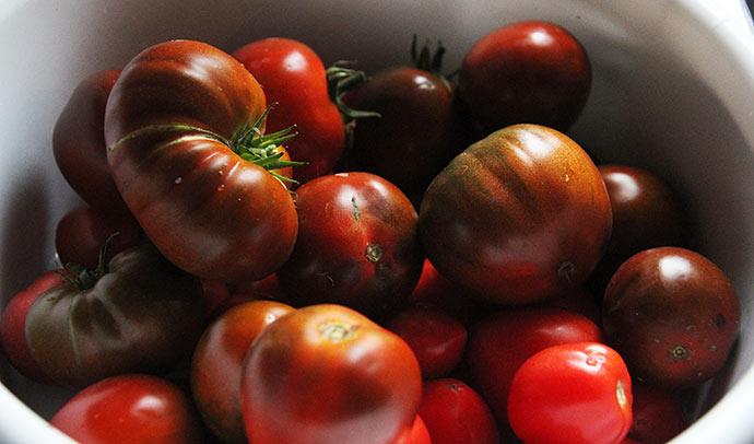 Der kom også nogle store bøftomater i tomatsaucen.
