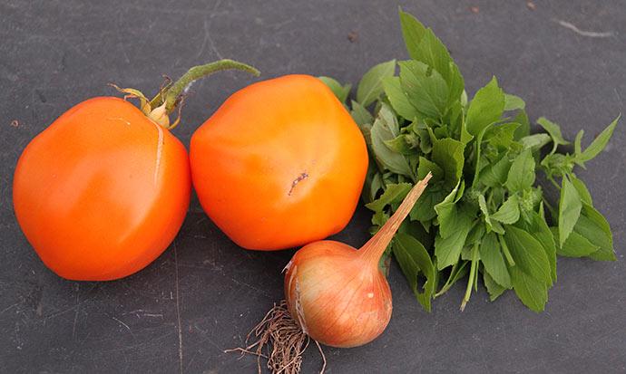 Til aftensmad fik vi kylling i gul tomatsovs med løg, bladselleri og citronbasilikum.