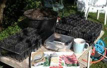 Så er der gjort klar til at fylde såjord i rootrainere og så frø-