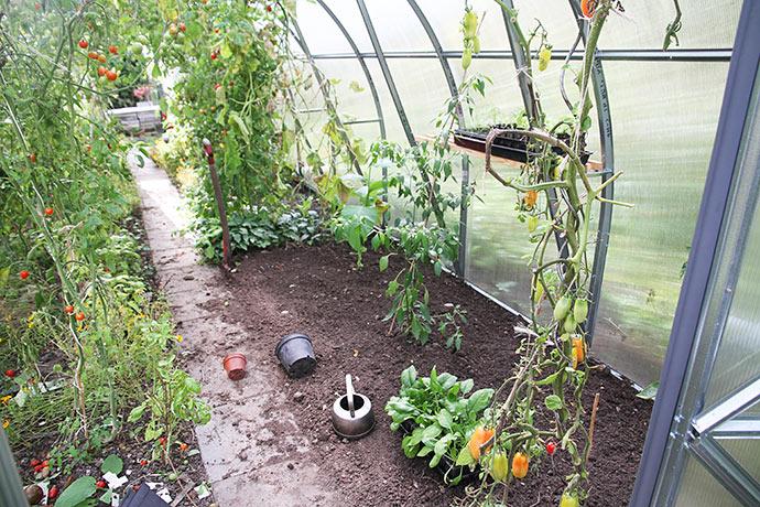 Nu er der ryddet plads til at plante nyt.