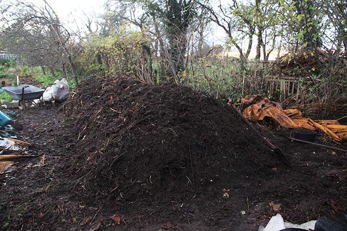 Færdig kompostbunke, forrest den helt omsatte del.