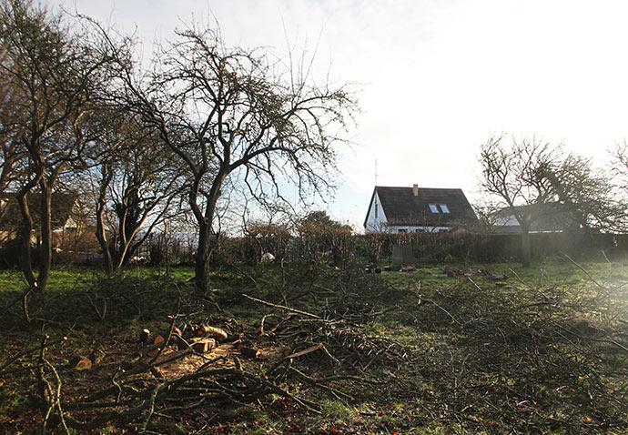 Da set store Belle de Boskoop træ var væk, kunne vi pludselig se vores hus herfra.