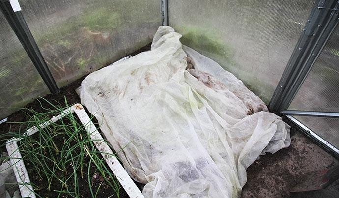 Til sidst lagde jeg et par lag fiberdug over bedet. Det skal lægges pænt over bedet, når plastpladen fjernes.