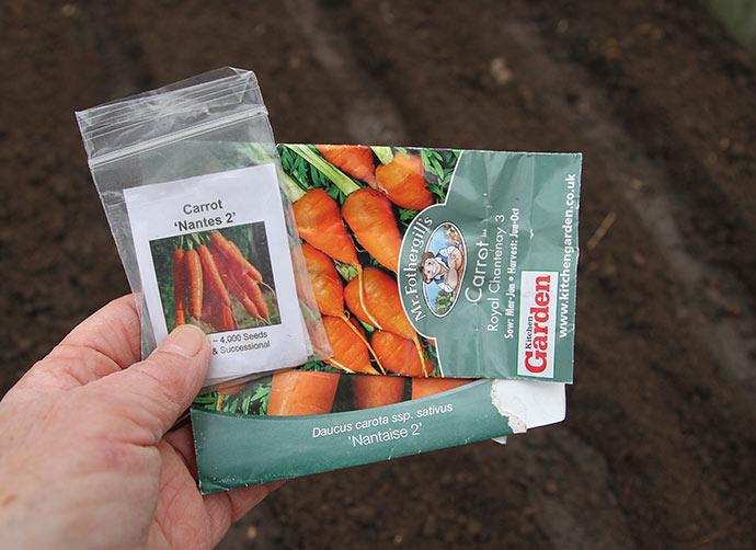 Det var de gulerodsfrø, jeg havde fra sidste år af tidlige gulerødder. Håber de spirer.