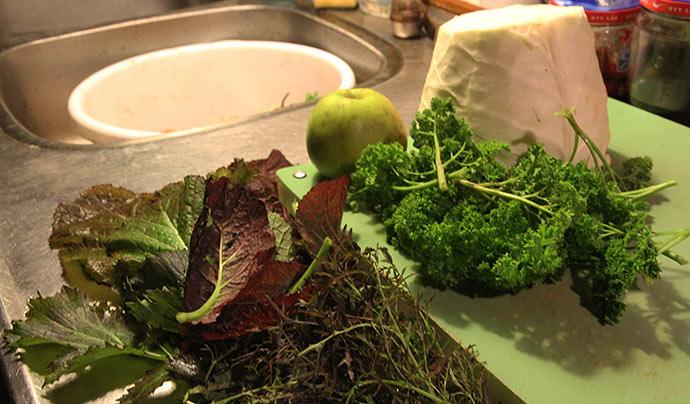 Til salat: Filderkraut kål, æble og asiatiske bladgrønsager. Desuden persille til grønt drys-