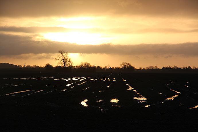 Solopgang over mark med stående vand.