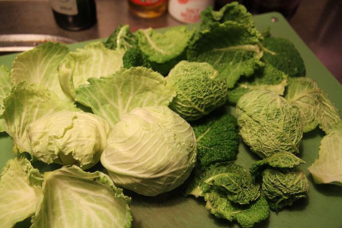 Små lækre savoykål og kål af sorten January King. Begge kan klare en del frost .