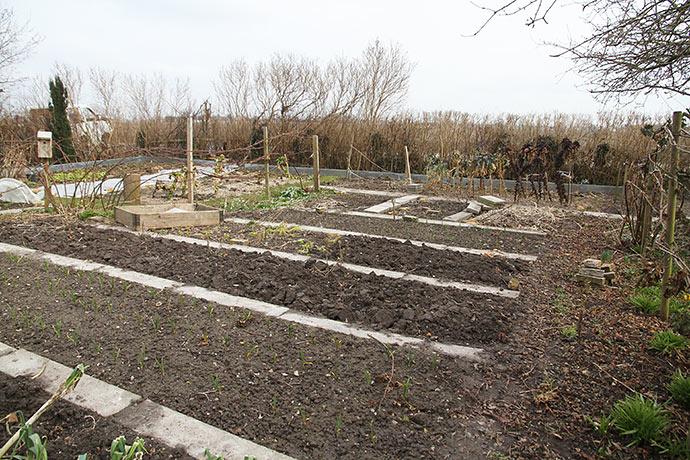 Køkkenhave sidst i marts - våd og kold jord.