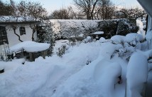 God morgen til en gård, hvor der er endnu mere sne end dagen før. Svært at finde et sted til mere sne.