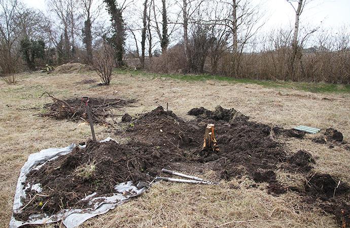 Tjørnen krævede noget større gravearbejde end den stub, vi fjernede i går - det kan ses i baggrunden