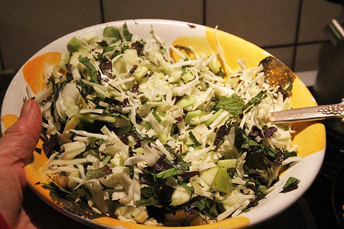 Vintersalat med hvidkål og asiatiske bladgrønsager, bl.a. Red Knight.
