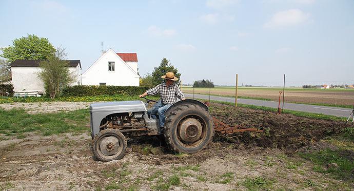 Med harven fik vi trukket nogle græstørv ud fra stykket.