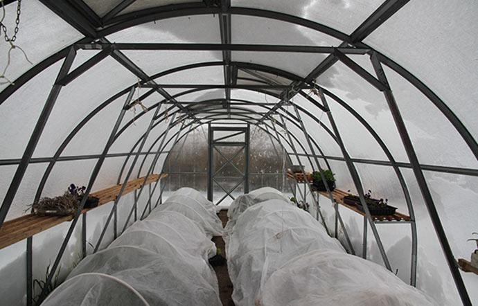 Snedækket drivtunnel, hvor næsten alle planter er under fiberdug.