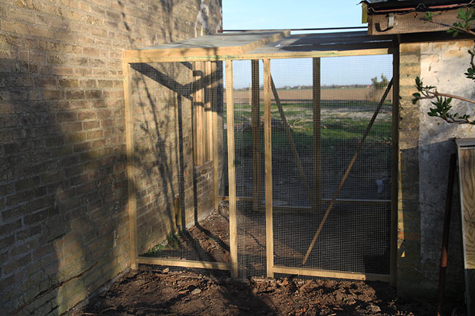 Volierenettet er gravet ned i 50 cm dybde plus der er sat 50 cm høje fliser ned uden for nettet.