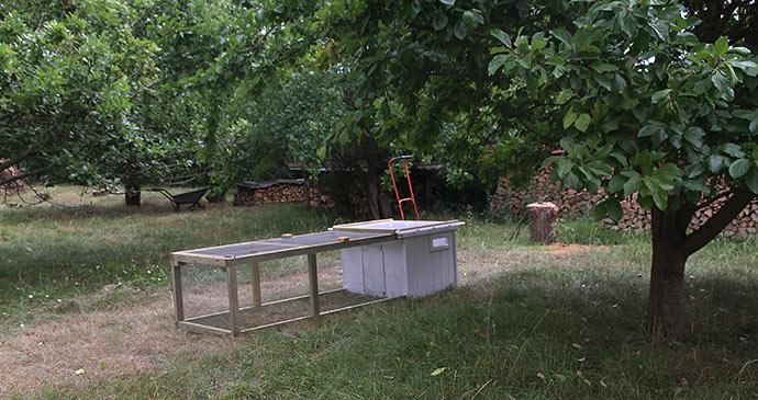 Under blommetræerne står et nybygget kyllinghus og venter på Amalie og kyllingerne.