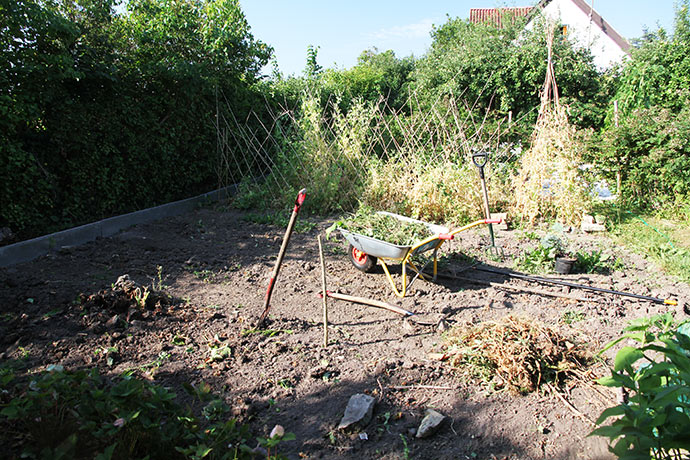 Tre bede er ledige efter 3. års jordbær, tidlige kartofler og løg.