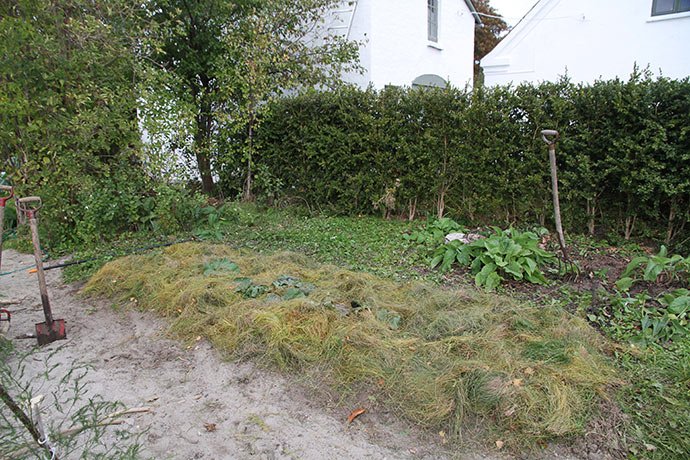 Et tykt lag jorddække skal holde på fugtighedebn.