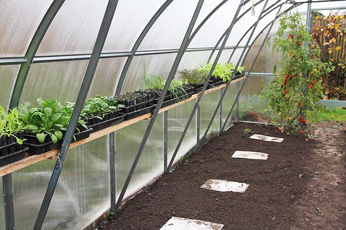 Jorden er klar til at plante i. De hvide plader er trædeplader.