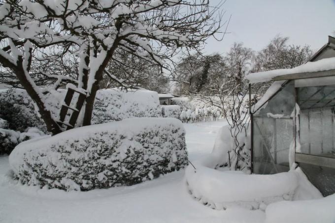 Men haven er smuk med sne på træernes grene.
